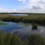 Netherlands_Grote_Peel_lake